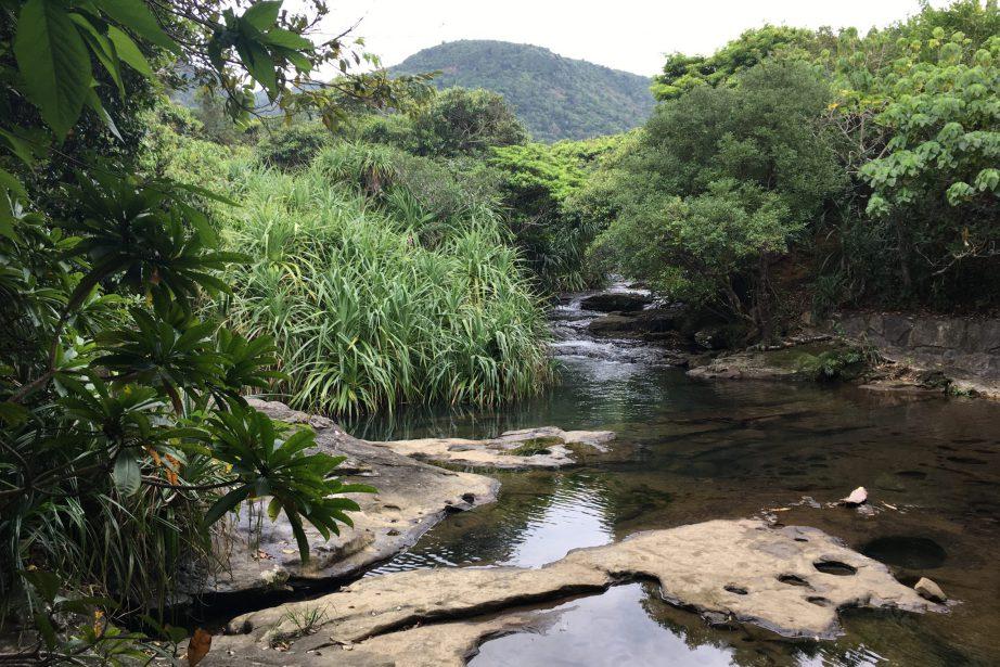 大見謝川 (1)
